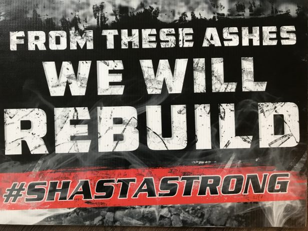 ShastaStrong